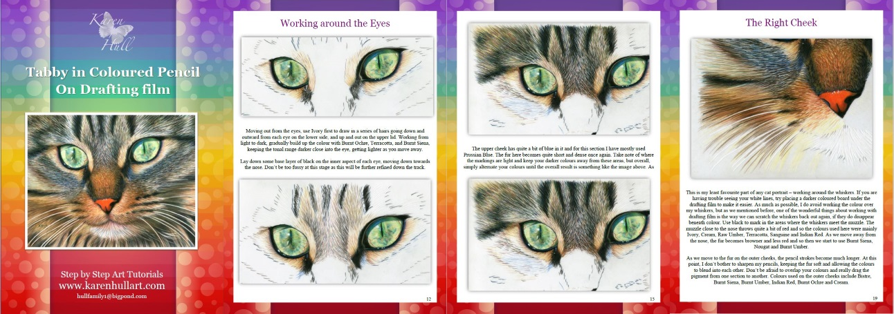Tabby in Coloured Pencil on Drafting film Tutorial